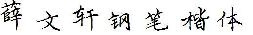 薛文轩钢笔楷体