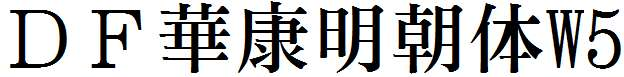DF華康明朝体W5