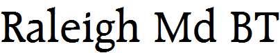 Raleigh-Md-BT-Medium