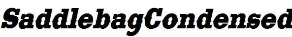 SaddlebagCondensed-Italic