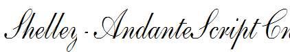 Shelley-AndanteScript-Cn