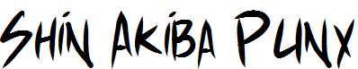 Shin-Akiba-Punx