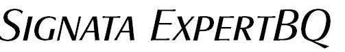 SignataExpertBQ-Italic