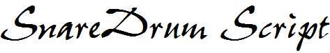SnareDrum-Script