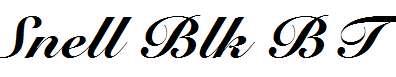 Snell-Black-BT