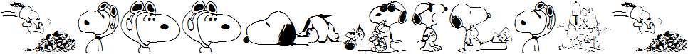 Snoopy-Dings