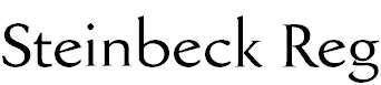 SteinbeckFC-Reg