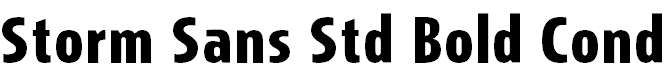 StormSansStd-BoldCond