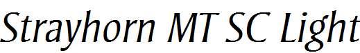 Strayhorn-MT-OsF-Light-Italic