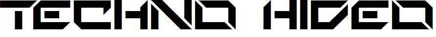 Techno-Hideo-copy-1-