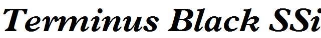 Terminus-Black-SSi-Bold-Italic