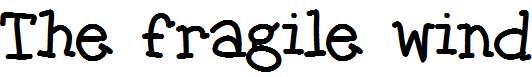 The-fragile-wind