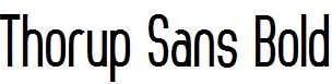 Thorup-Sans-Bold