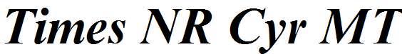 Times-NR-Cyr-MT-Bold-Inclined