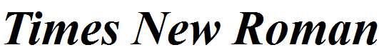 Times-New-Roman-Bold-Italic-copy-1-