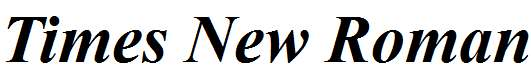 Times-New-Roman-Bold-Italic