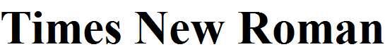 Times-New-Roman-Bold