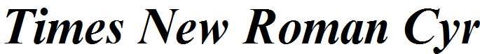 Times-New-Roman-Cyr-Bold-Italic