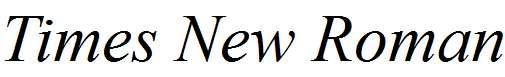 Times-New-Roman-Italic
