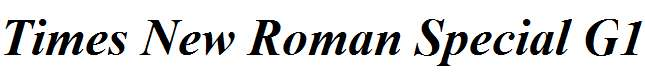 Times-New-Roman-Special-G1-Bold-Italic