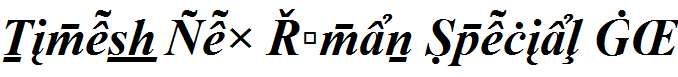 Times-New-Roman-Special-G2-Bold-Italic