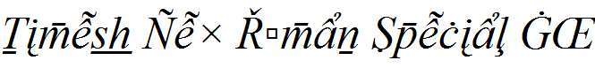 Times-New-Roman-Special-G2-Italic