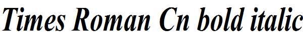Times-Roman-Cn-Bold-Italic
