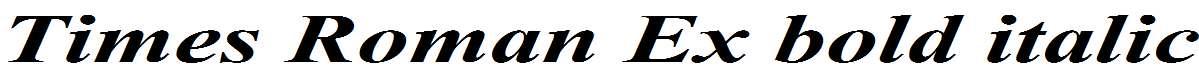Times-Roman-Ex-Bold-Italic-copy-1-