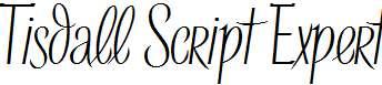 Tisdall-Script-Expert