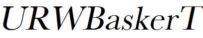 URWBaskerT-Oblique