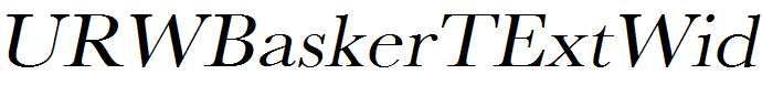 URWBaskerTExtWid-Oblique