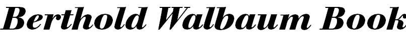 WalbaumBook-BoldItalic