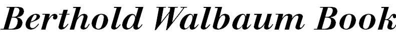 WalbaumBook-MediumItalic