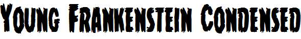 Young-Frankenstein-Condensed