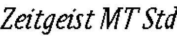 ZeitgeistMTStd-Italic