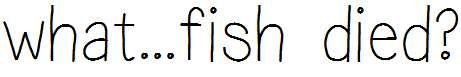 what..fish-died-
