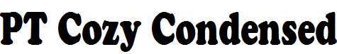 PT-Cozy-Condensed