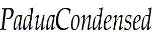 PaduaCondensed-Italic