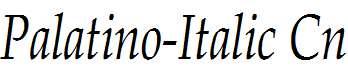 Palatino-Italic-Cn