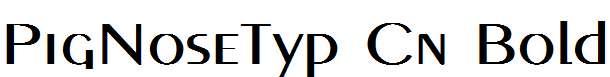 PigNoseTyp-Cn-Bold