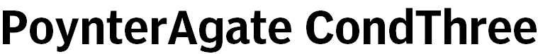 PoynterAgate-CondThree