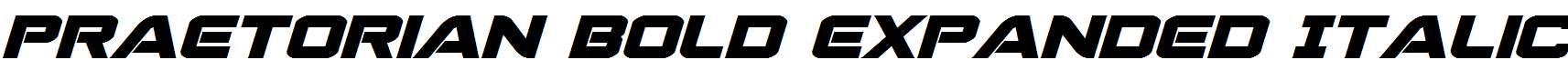 Praetorian-Bold-Expanded-Italic