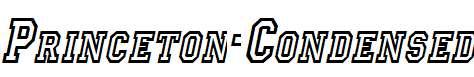 Princeton-Condensed-Italic-1-