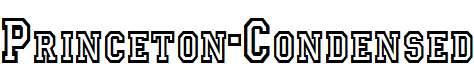 Princeton-Condensed-Normal-1-