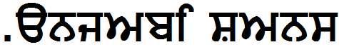 Punjabi-Sans
