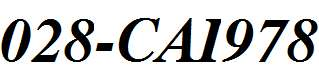 028-CAI978-Bold-Italic