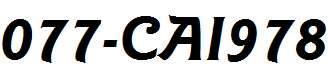 077-CAI978