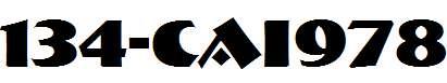 134-CAI978