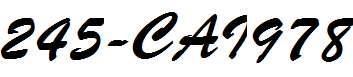 245-CAI978