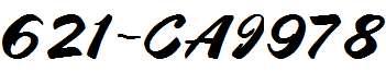 621-CAI978